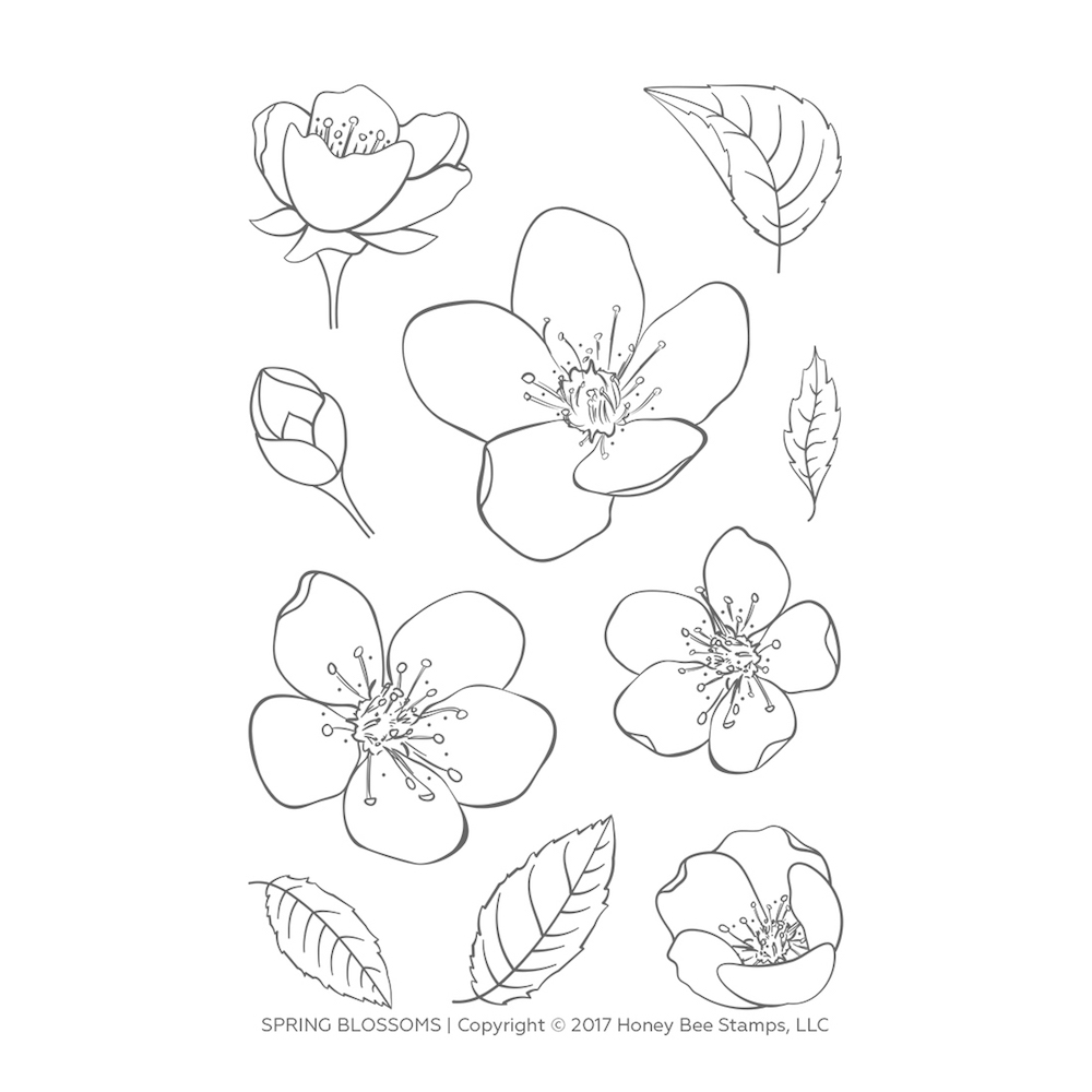 Honey Bee SPRING BLOSSOMS Clear Stamp Set hbst-101* zoom image