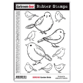 Darkroom Door Cling Stamp GARDEN BIRDS Rubber UM ddrs190