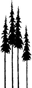 Tim Holtz Rubber Stamp TALL TREES Pine Stampers Anonymous P3-1373