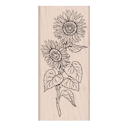 Hero Arts Rubber Stamps FLORALS SUNFLOWER STEM K6289 Preview Image