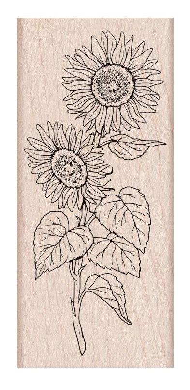 Hero Arts Rubber Stamps FLORALS SUNFLOWER STEM K6289 zoom image