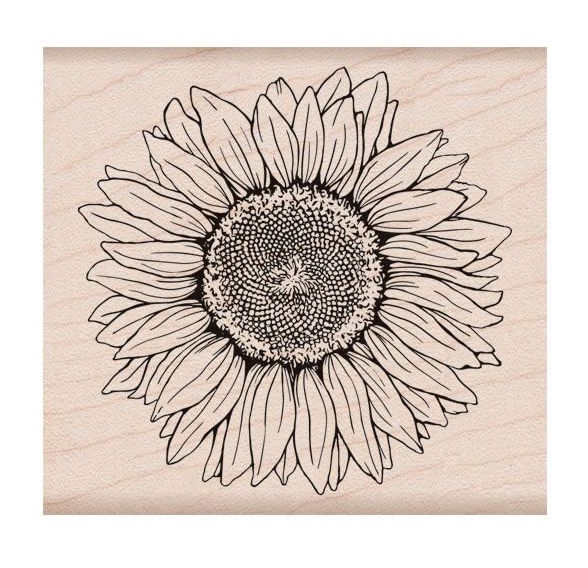 Hero Arts Rubber Stamp FLORALS SUNFLOWER K6288 zoom image