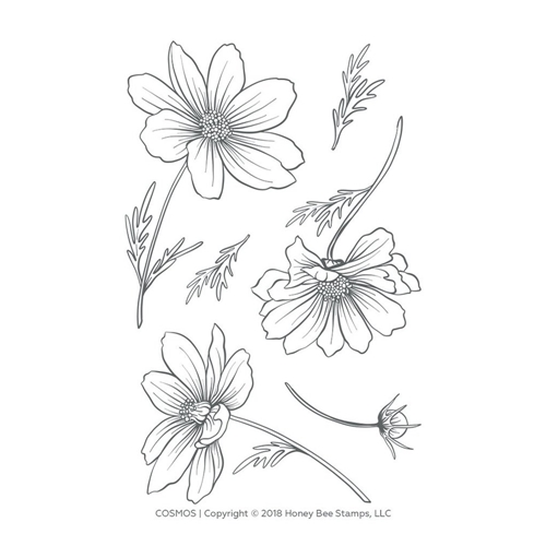 Honey Bee COSMOS Clear Stamp Set hbst-124 Preview Image