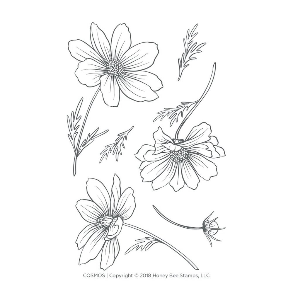 Honey Bee COSMOS Clear Stamp Set hbst-124 zoom image