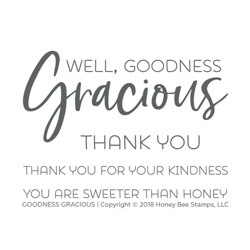 Honey Bee GOODNESS GRACIOUS Clear Stamp Set hbst-136 Preview Image