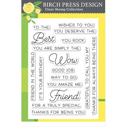 Birch Press Design BEST FRIEND Clear Stamps cl8132 Preview Image