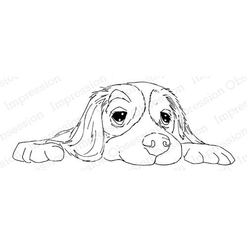 Impression Obsession Cling Stamp FLOPPY PUP E13728 Preview Image