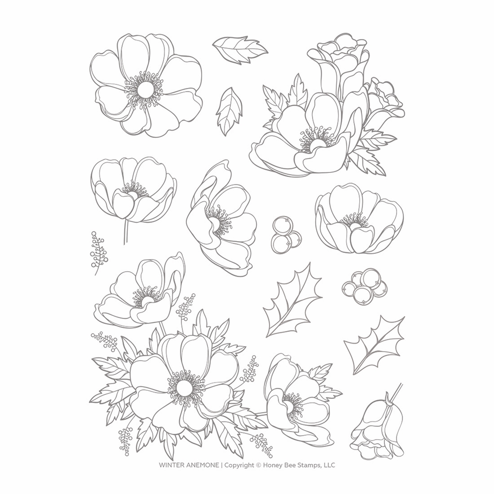 Honey Bee WINTER ANEMONE Clear Stamp Set hbst-139 zoom image