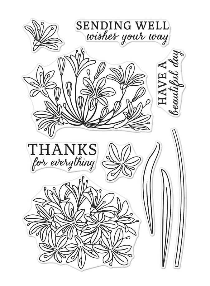 Hero Arts Clear Stamps BEAUTIFUL DAY AGAPANTHUS CM319 zoom image
