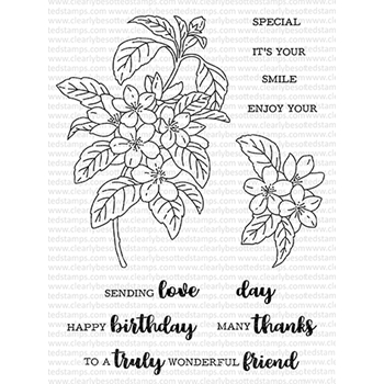Clearly Besotted BLOSSOM IN BLOOM Clear Stamps