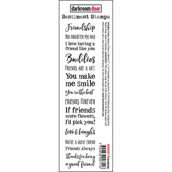 Darkroom Door Cling FRIENDSHIP Sentiment Stamp ddse007