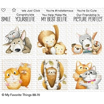 My Favorite Things PICTURE PERFECT Clear Stamps BB70
