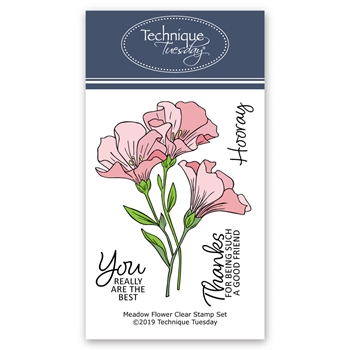 Technique Tuesday MEADOW FLOWERS Clear Stamps 2773