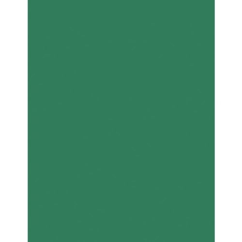 Bazzill EVERGREEN Card Shoppe Heavy Weight 8.5 x 11 Cardstock 300044 Preview Image