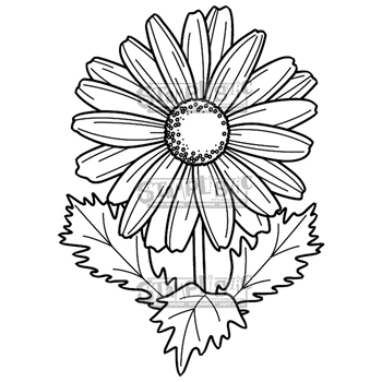 Stamplistic Cling Stamp DAISY j190501