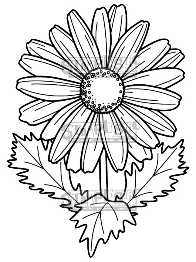Stamplistic Cling Stamp DAISY j190501 zoom image
