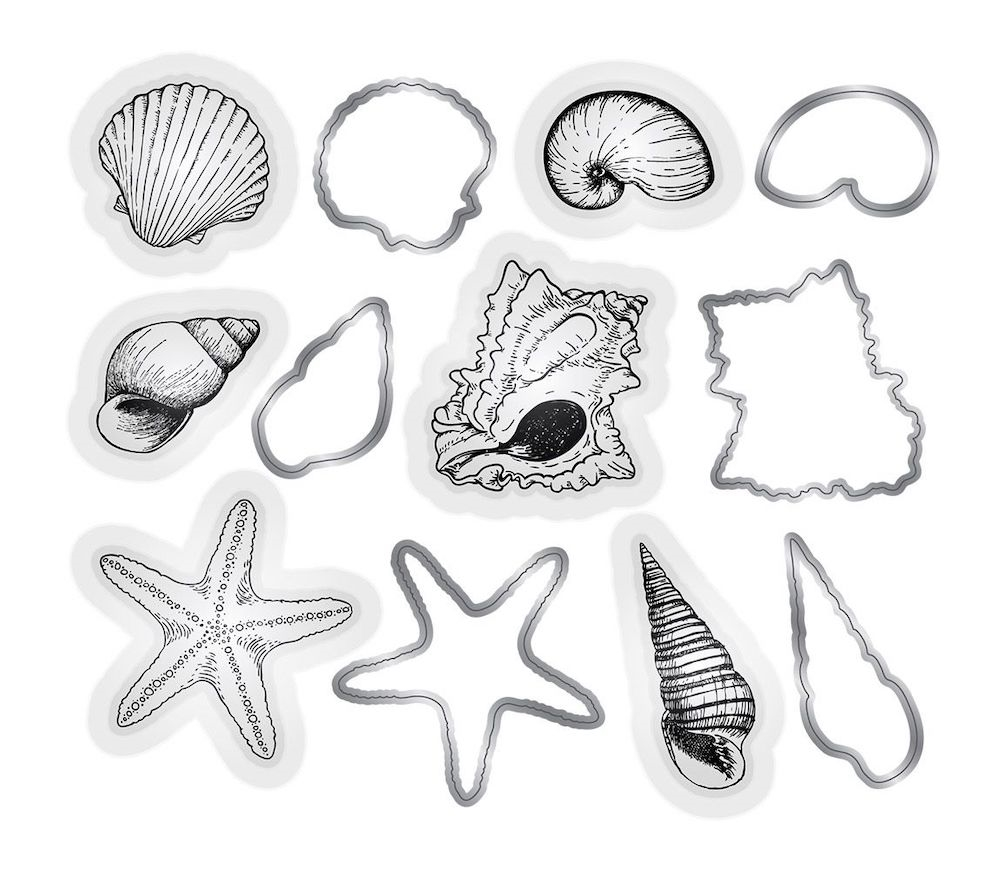 Crafter's Companion SEASHELLS Nautical Stamp And Die Set s-naut-mds-shell zoom image