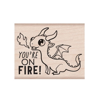 Hero Arts Rubber Stamp ON FIRE E6334