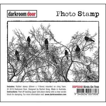 Darkroom Door Cling Stamp BIRDS ON A TREE Photo ddps048