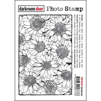 Darkroom Door Cling Stamp GERBERAS Photo ddps045