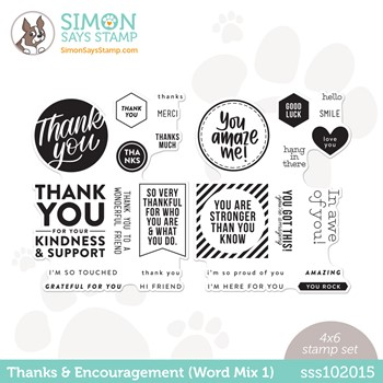 Simon Says Clear Stamps THANKS AND ENCOURAGEMENT WORD MIX 1 sss102015 Believe In You