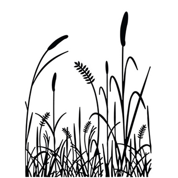 Darice GRASS Embossing Folder 121875