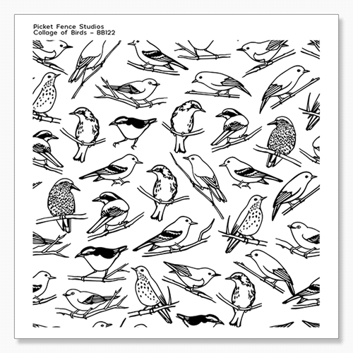 Picket Fence Studios COLLAGE OF BIRDS Clear Stamp bb122 Preview Image