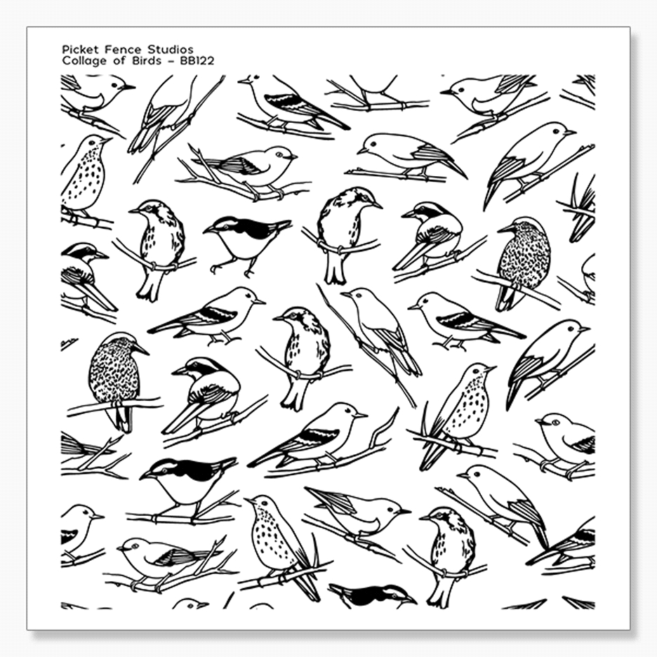 Picket Fence Studios COLLAGE OF BIRDS Clear Stamp bb122 zoom image
