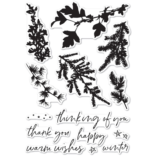 Memory Box Clear Stamps WINTER GREENERY cl5235 Preview Image