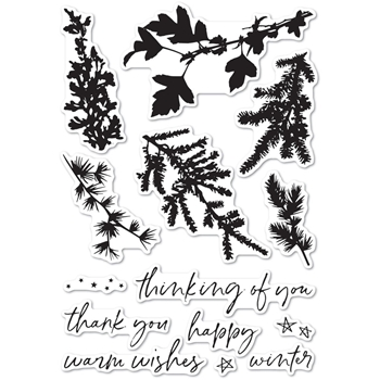 Memory Box Clear Stamps WINTER GREENERY cl5235
