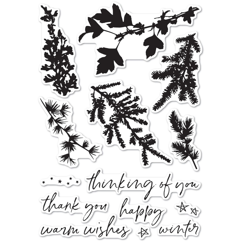 Memory Box Clear Stamps WINTER GREENERY cl5235 zoom image