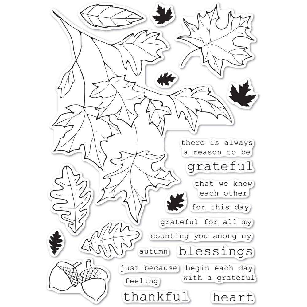 Memory Box Clear Stamps GRATEFUL AUTUMN cl5243 zoom image
