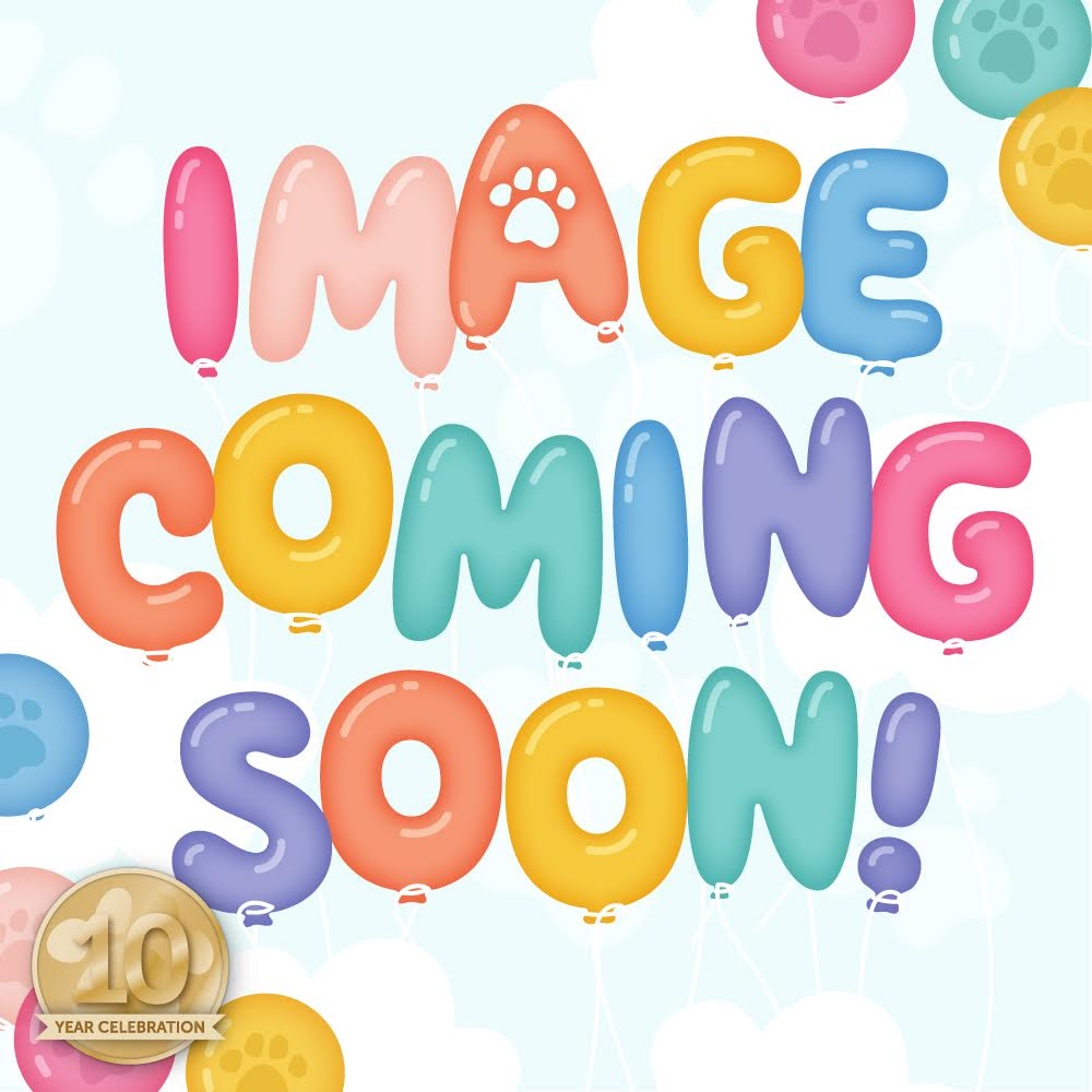 Limited Edition Simon Says Stamp SWEET BIRTHDAY 2019 STAMPtember Card Kit sbssk19 Preview Image