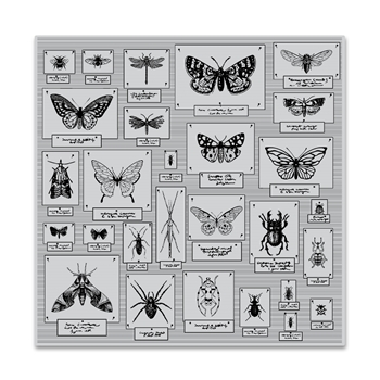 Hero Arts Cling Stamps BUG COLLECTION Bold Prints CG795