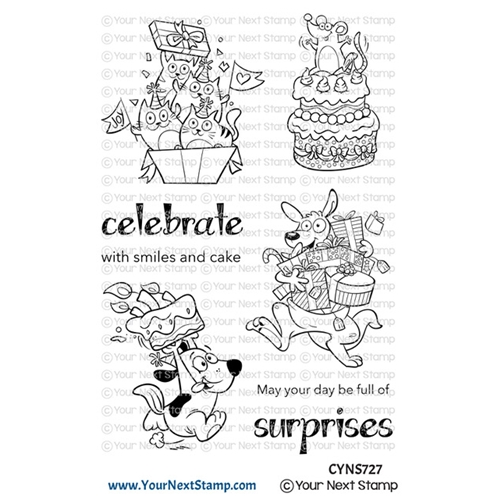 Your Next Stamp BIRTHDAY SURPRISES Clear cyns727 Preview Image