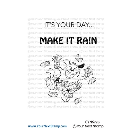 Your Next Stamp MAKE IT RAIN Clear cyns728 Preview Image