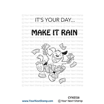 Your Next Stamp MAKE IT RAIN Clear cyns728