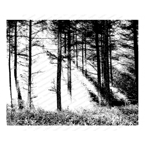 Impression Obsession Cling Stamp FOREST SUN L13829 Preview Image