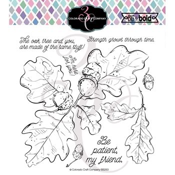 Colorado Craft Company Big and Bold OAK LEAVES AND ACORNS Clear Stamps BB263