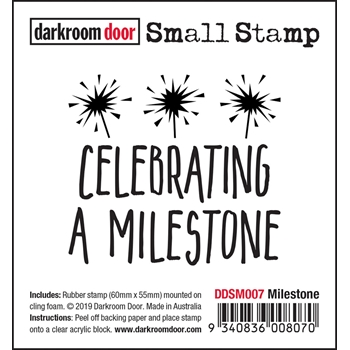 Darkroom Door Cling Stamp MILESTONE Small ddsm007