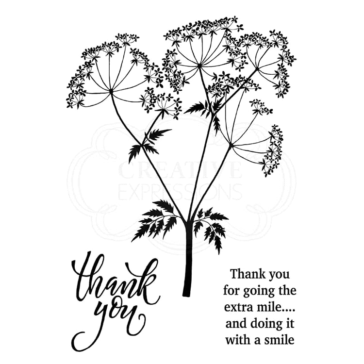 Woodware Craft Collection COW PARSLEY Clear Stamps jgs684 zoom image