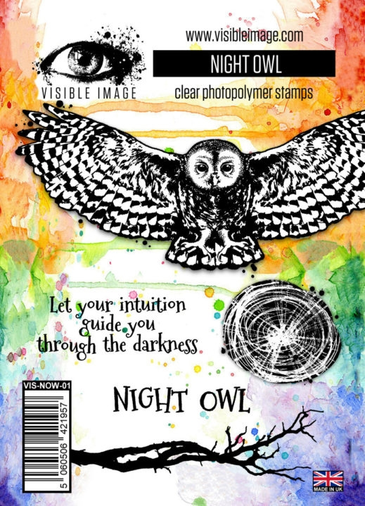 Visible Image NIGHT OWL Clear Stamp Set VIS-NOW-01 zoom image