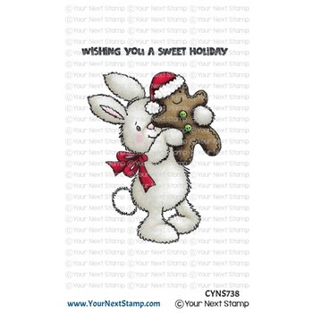 Your Next Stamp CHRISTMAS COOKIE Clear cyns738