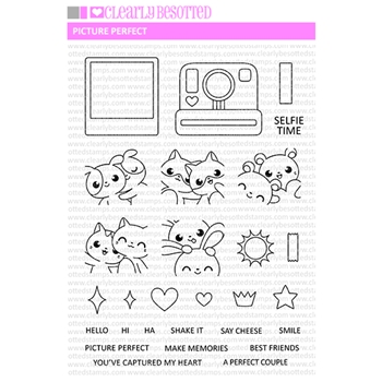 Clearly Besotted PICTURE PERFECT Clear Stamps