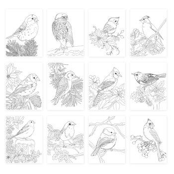 Simon Says Stamp Suzy's WINTER BIRDS Watercolor Prints szwc19wb