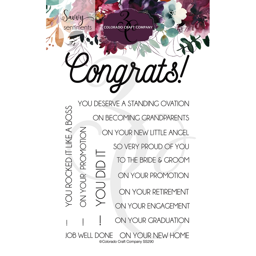 Colorado Craft Company Savvy Sentiments CONGRATS EVERYTHING Clear Stamps SS290 zoom image