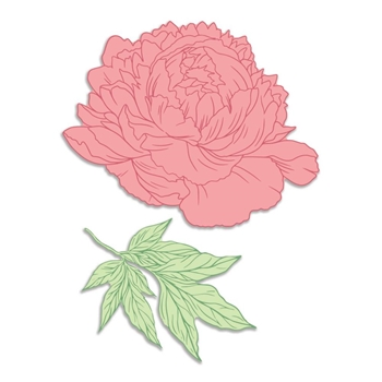 Couture Creations PEONY AND LEAFY BRANCH Peaceful Peonies Stamp And Die Set co727421