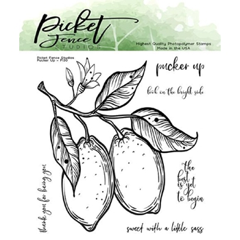 Picket Fence Studios PUCKER UP Clear Stamps f130