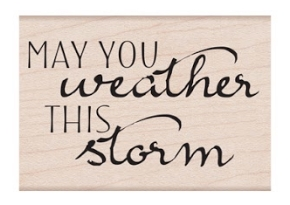 Hero Arts Rubber Stamp MAY YOU WEATHER THIS STORM E6402