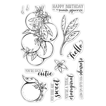 Hero Arts Clear Stamps ORANGE BLOSSOMS CM414